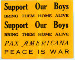 """Night Raiders"" -- Support Our Boys -- BRING THEM HOME ALIVE -- PAX AMERICANA -- PEACE IS WAR"