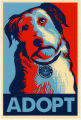 Barack Obama -- 2008 Presidential Election Campaign -- Adopt A Mutt Like Me