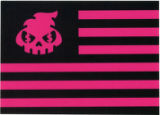 Delme -- American Flag With Skull